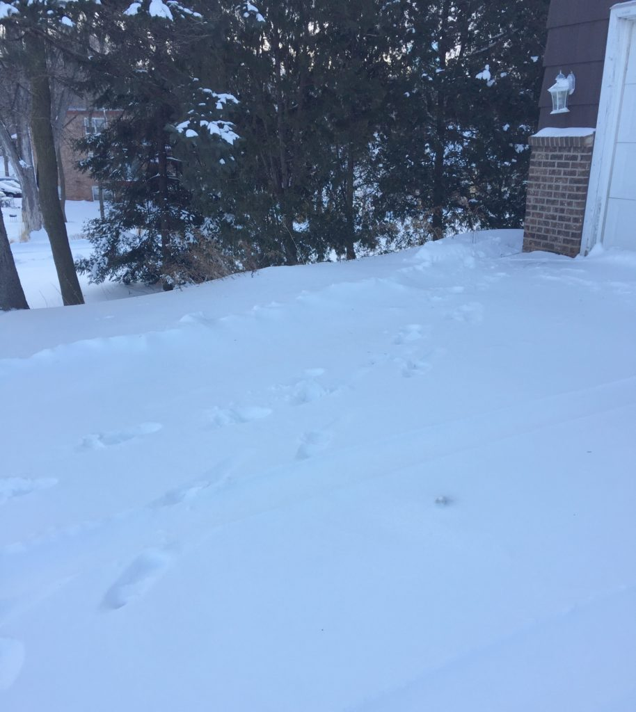 A picture of boot prints in the snow.