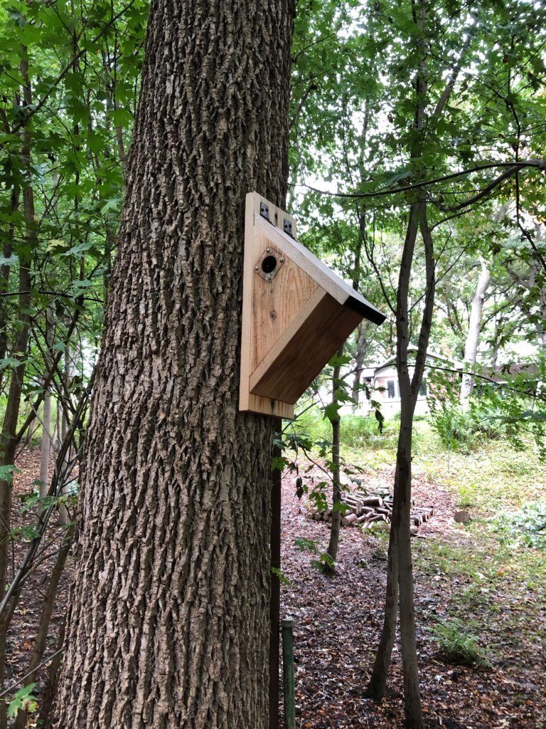 Small nest box